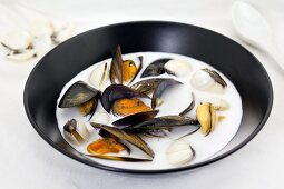 Clam chowder with mussels, clams and coconut milk