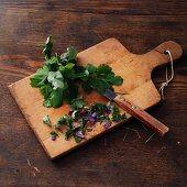 Akelei, klein geschnitten auf Holzbrett (für Akelei-Wein nach Hildegard von Bingen)