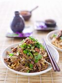 Stir-fried Chicken and Black Bean Mixed Noodles