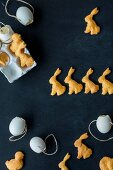Easter bunny cheese crackers and blown out eggs