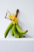 Green bananas and yellow orchids