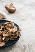 Various mushrooms, fresh and dried