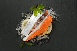 Sea trout fillet on ice cubes and lemon slices
