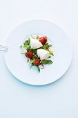 Weisser Tomatenschaum mit Tomaten und Rucola