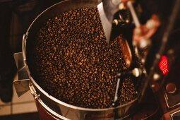 Blick von Oben auf geröstete Kaffeebohnen aus der Röstmaschine