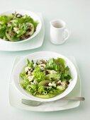 Green Apple, Blue Cheese, Cranberry & Pistachio Salad