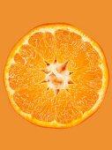 A slice of mandarin on an orange surface, close-up