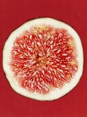 A slice of red fig on a red surface, close-up