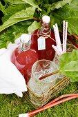 Bottles of homemade rhubarb syrup
