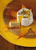 Blue cheese on autumn leaf