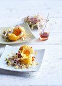 Gebratene Eier mit Sprossen
