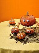 Pumpkin spiders as Halloween decoration