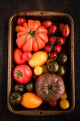 Colourful tomatoes in an old baking tray