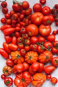 An assortment of red tomatoes