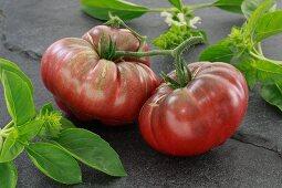 Schwarze Russische Tomaten