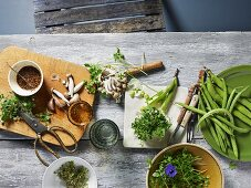 Ingredients for summer cuisine: fresh mushrooms, beans and herbs
