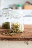 Fresh sprouts in a glass jar