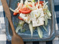 Marinated tofu with tomato and fennel