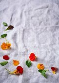 Nasturtium flowers and herb leaves on a linen cloth