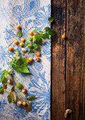 Physalis branches on a wooden table with a tablecloth (seen from above)