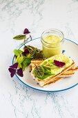 Favabohnen-Hummus mit Toast und Salatblättern