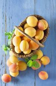 Apricots in a wicker basket on a blue wooden background