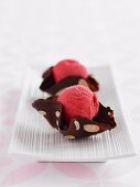 Chocolate Baskets with Raspberry Sorbet (Low Fat)