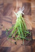 Rock chives sprouts