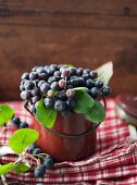 Aronia berries in an enamel pot