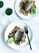 Sea mullet with harissa, preserved lemon and perl couscous