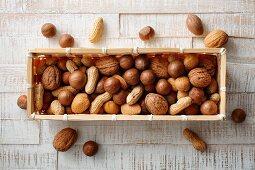 Nut mix of walnuts, macadamia nuts, hazelnuts, almonds and peanuts