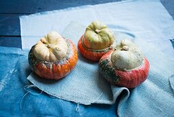 Three turkish pumpkins on blue fabric