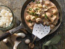 Pilze in Sahnesauce mit Schnittlauch und Salbei