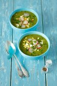 Spinach soup with egg and radishes