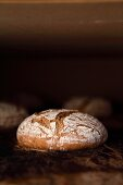 Rye-wheat bread in the oven - the crust starts to get darker and cracks open (bloom)