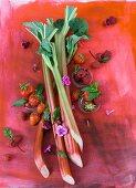 Berries, rhubarb and mint