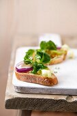 Baguette slices with olive oil and salad (lamb's lettuce, cress, onion, iceberg lettuce, einkorn)