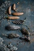 Pine cones and bark