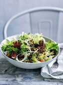 Octopus, frisee and fennel salad with lardons and lentil dressing