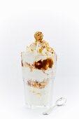 Frozen yoghurt with nut cake, nut sauce, hazelnuts and cream