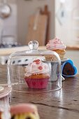 Cupcake with pink frosting under a glass dome on a kitchen table
