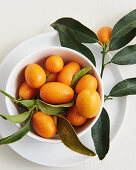 Kumquats with leaves in a porcelain bowl