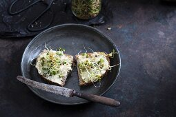 Bread with a cashew spread and fresh sprouts (vegan)