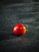 Eine Tomate der Sorte Azur