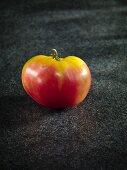Eine Tomate der Sorte Bulgarian Triumph