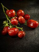 A bunch of Prune Noire tomatoes