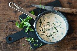 Gorgonzola sauce with basil