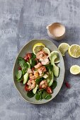 Spicy prawn and avocado salad