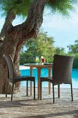 Two cocktails on table under gnarled old tree next to swimming pool