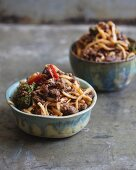 Szechuan Udon noodles with meat and vegetables (Japan)
